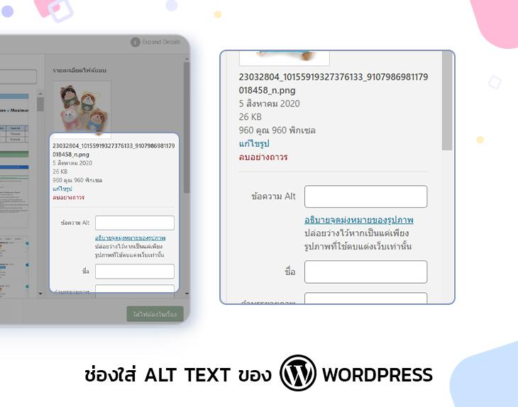 ช่องใส่ Alt Text ของ WordPress
